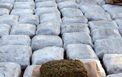 На Львівщині затримано чоловіка, який намагався контрабандою перемістити понад 60 кг наркотиків. Фото: відкриті джерела.