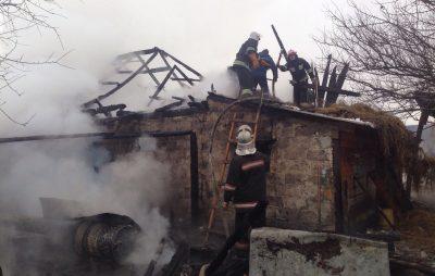 На Львівщині під час пожежі загинули кози