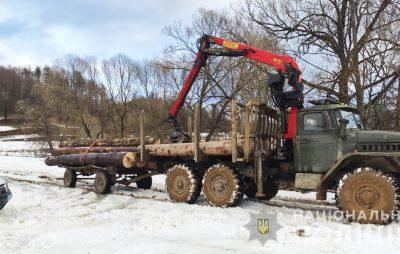 На Львівщині продовжують незаконно вирубувати ліс