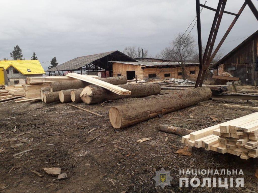 На Львівщині продовжують незаконно вирубувати ліс. Фото: ГУ НП.