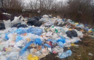 На Львівщині місто потопає у горах сміття. Фото: Буськ онлайн.