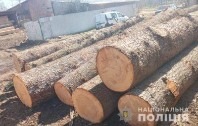 У Бориславі поліцейські виявили немарковану деревину