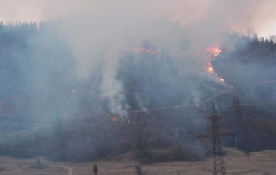 Як через підпал трави горіли Карпати. Фото: Інститут Просвіти.