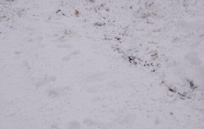 На Львівщині маршрутка загрузла у снігу. Фото: Андрій Дума
