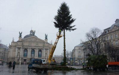У Львові демонтували головну ялинку міста. Фото: ЛМР