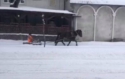 У Бродах конем на санях відгортають сніг. Фото: скриншот.