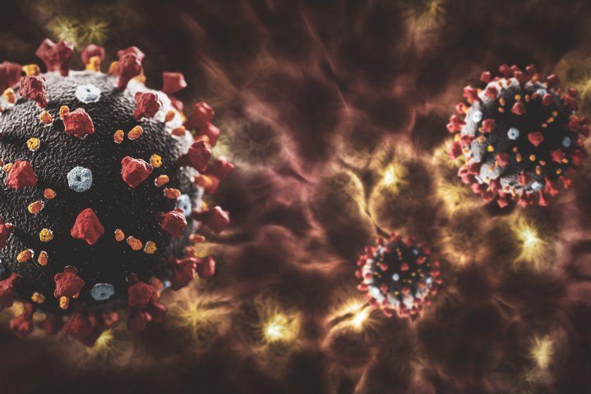 Антитіла до коронавірусу живуть в організмі 9-10 місяців. Фото з відкритих джерел