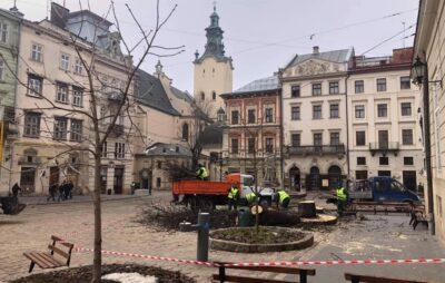 У Львові на площі Ринок зрубали сторічний каштан. Фото: Олександра Сладкова