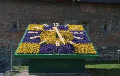 У Львові на Митній площі заквітчали годинник. Фото: Львівська міська рада