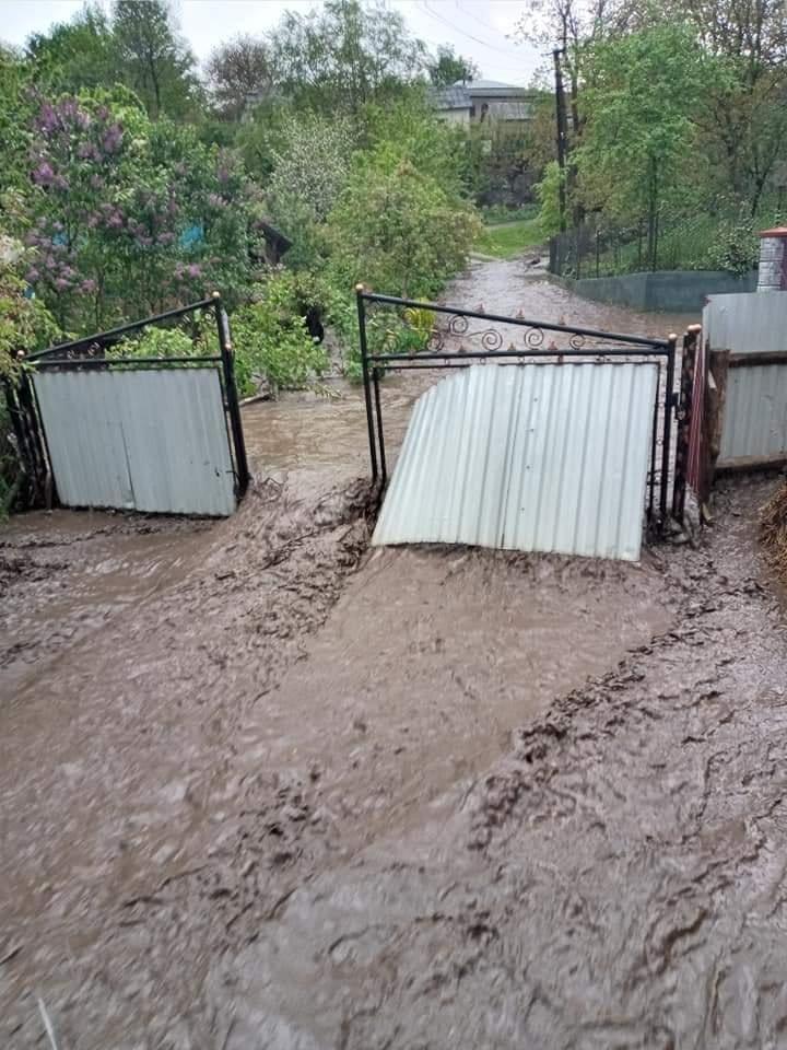 На Прикарпатті через сильний дощ затопило село. Фото: Репортер
