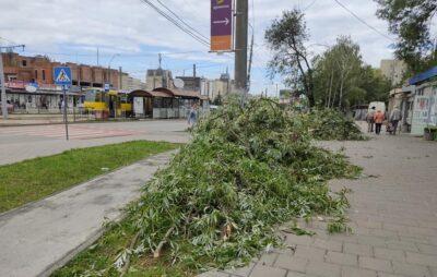 У Львові на Княгині Ольги вітер поламав дерева. Фото: Марія Борис