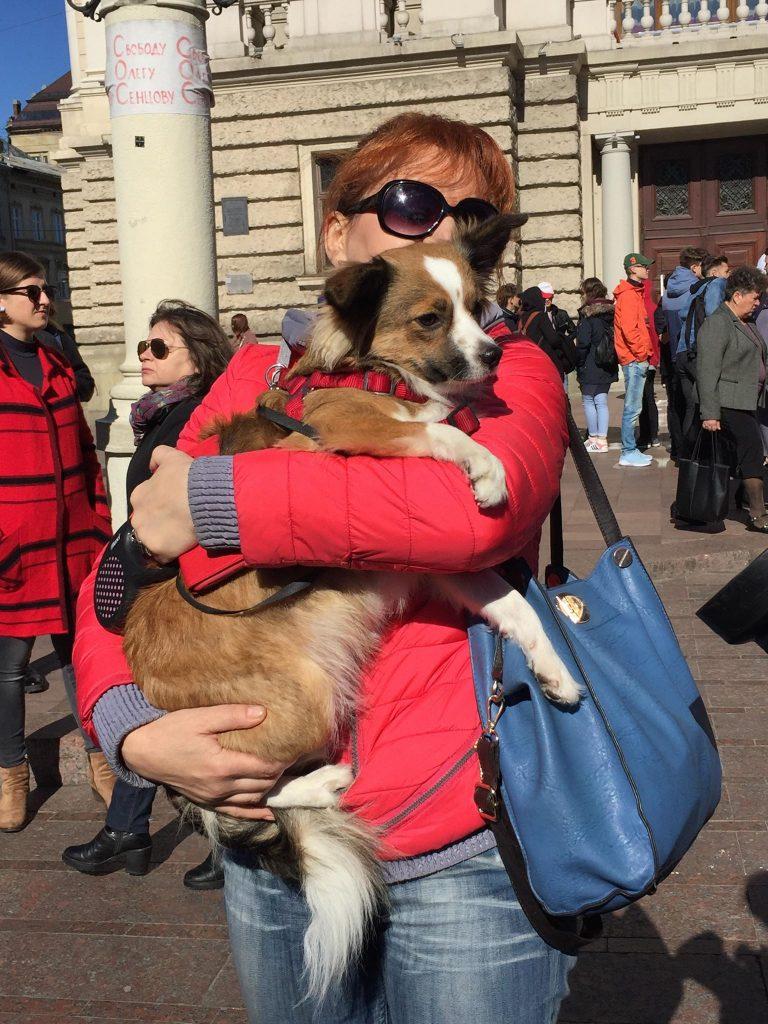У Львові пройшов Всеукраїнський марш за права тварин, фото Юра Кенцало 4studio