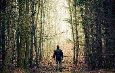 На Дрогобиччині у лісі заблукав чоловік. Фото ілюстроване з відкритих джерел.
