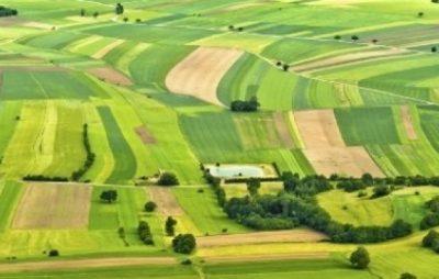 На Львівщині завдяки прокуратурі громадою набуто у власність понад 12 га земель вартістю 8,5 млн грн. Фото ілюстроване з відкритих джерел.