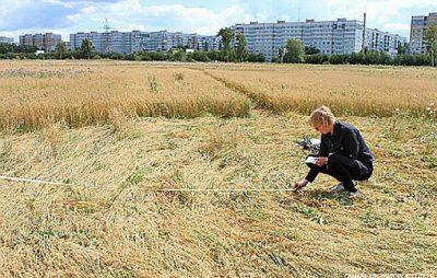 Прокуратура на Бродівщині повернула майже 40 га земель вартістю 25,6 млн грн. Фото: відкриті джерела.