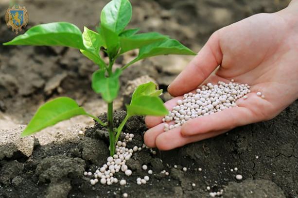 На Львівщині аграрія пропонують обміняти сільськогосподарську продукцію на мінеральні добрива
