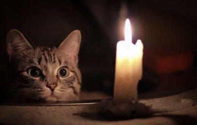 Половина Новояворівська залишилась без світла