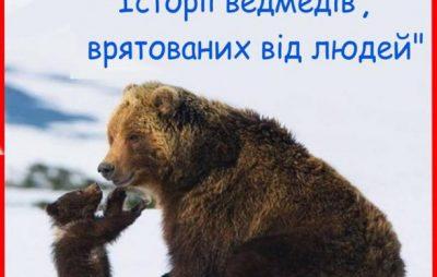 Стартує новий освітній ZOO-проект «Привіт, Ведмедику!»