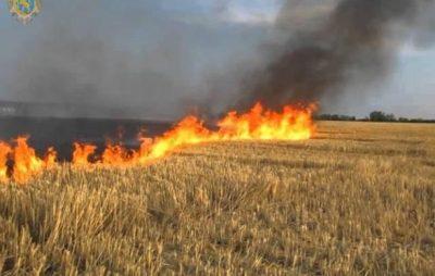 Мешканців Львівщини закликають не спалювати суху траву