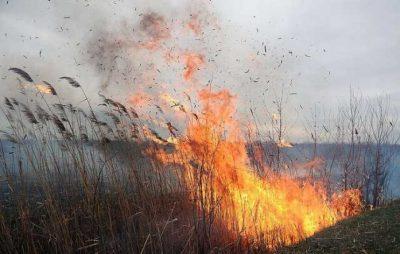 Упродовж вихідних вогнеборці ліквідували 54 пожежі сухої трави
