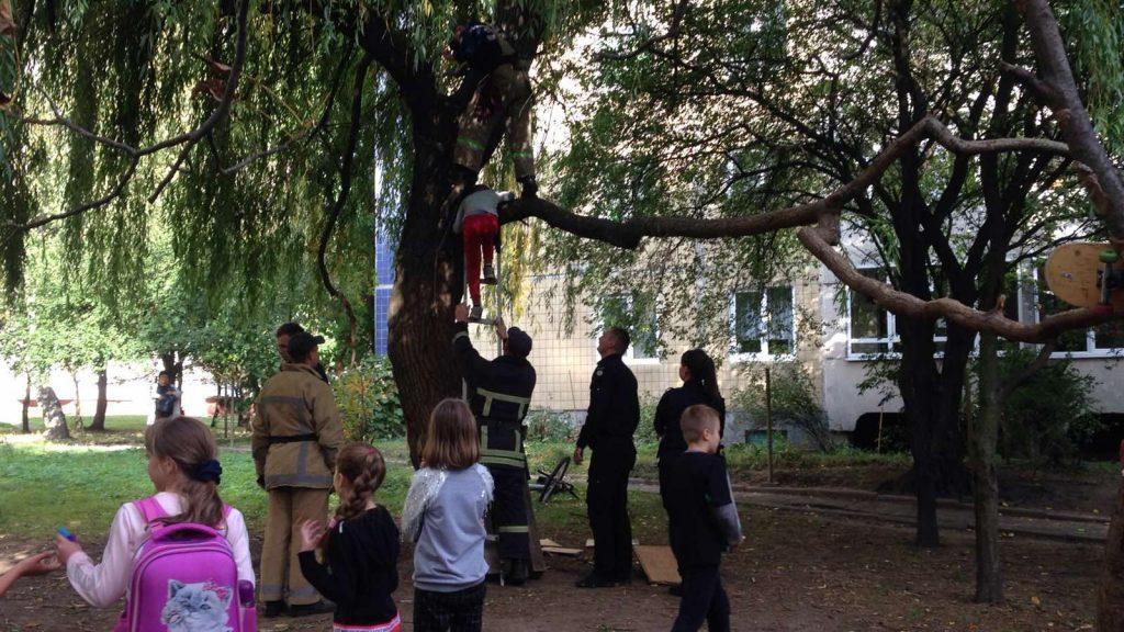 У Львові рятувальники зняли з дерева хлопця. Фото: відкриті джерела.