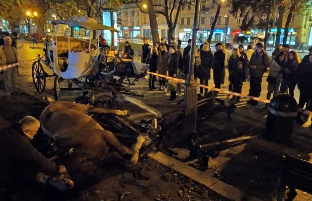У центрі Львова карета на пішохідній зоні знесла лавку: один кінь ледве дихає. Фото Варта-1